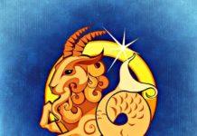 jaki znak zodiaku