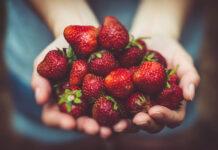 Owoce w codziennej diecie